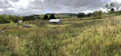 Plot of Land, Blacklunans PH10 7LL
